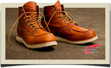 Red Wing Cloud EDI DiCentral