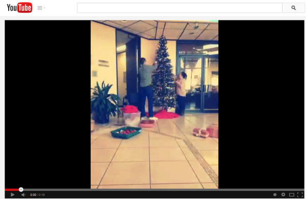 Decking the Halls and Trimming the Tree at DiCentral HQ!